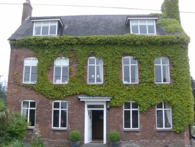 Bygone Windows 1st Scenic Ltd 54 thegem gallery masonry - Bygone Windows