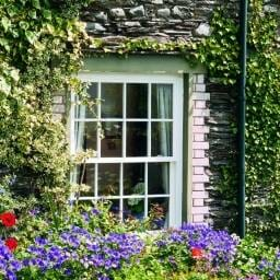 Sash Windows Kent 22 256x256 - sash-windows-kent