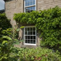 Sash Windows Kent 7 256x256 - sash-windows-kent